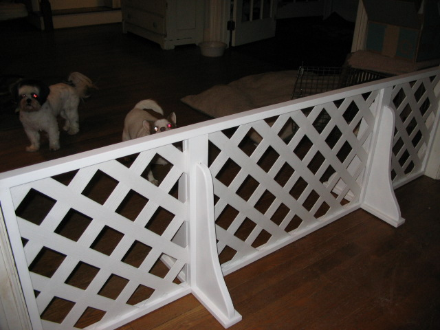 Wireless Fences For Small Dogs 187 Fencing